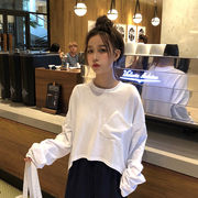 単一色 長袖Tシャツ 女 韓国風 ルース 前短い、後ろ長い 春 新しいデザイン 何でも似