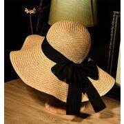 春夏 旅行 休日 大活用/INSスタイル/お出かけ/百掛け/麦わら帽子/日よけします/ビーチワンビース/帽子