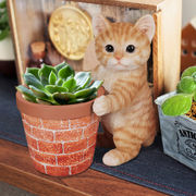 アニマルプランター(猫)茶トラ