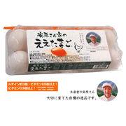 ●☆安原さん家のええたまご 10個×12パック 卵 玉子 タマゴ たまご 41001