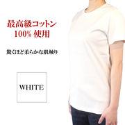 スーピマコットン究極のベーシックTシャツ Lサイズ ホワイト